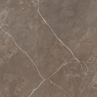 Oasis Detroit Brown Polished 60x60